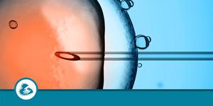 In Vitro Fertilization (IVF) Cost