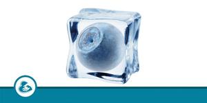 Cryopreservation Clinics