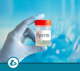 Donor SPERM